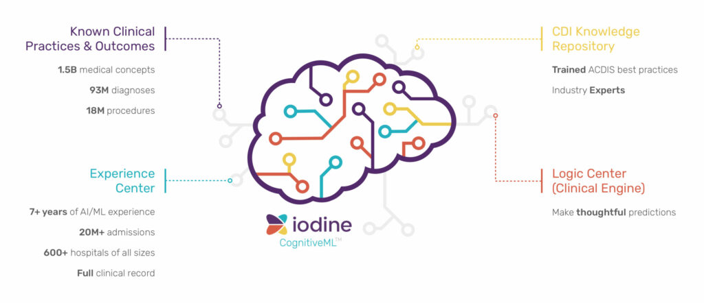 Cognitive Emulation: Insights from Iodine Data Scientists